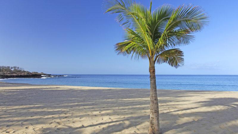 Caribbean Wedding - The Bahamas