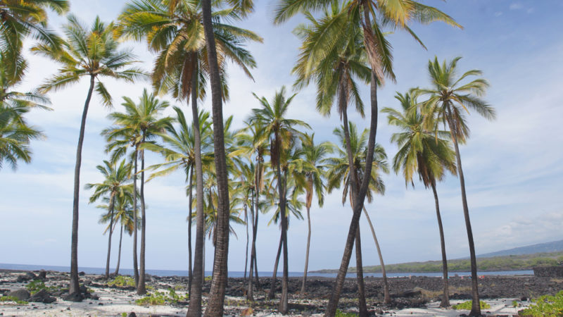 Honaunau Beach, The Big Island