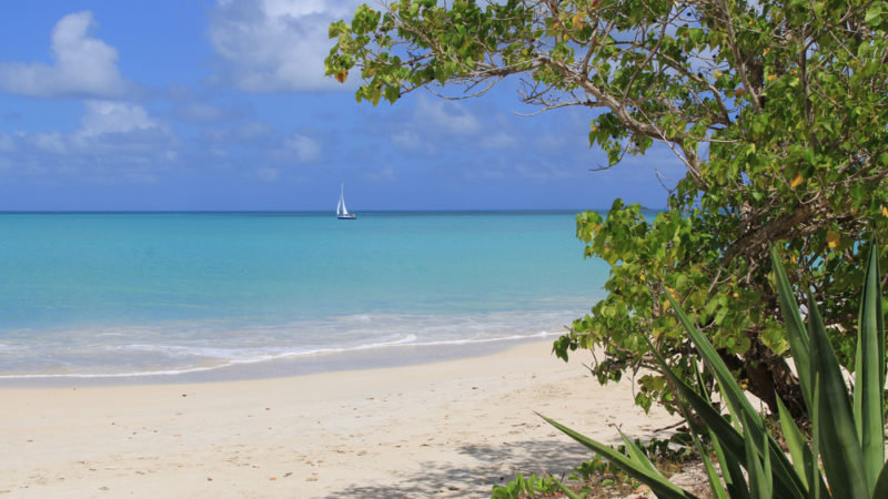Galley Bay Beach Antigua