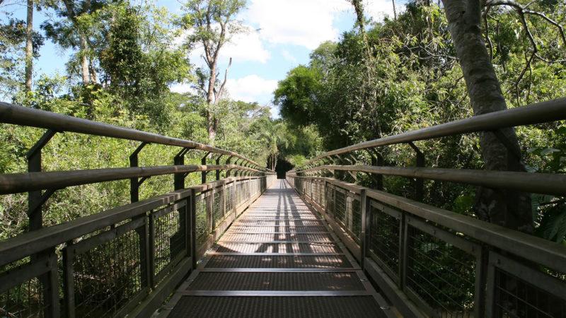 Iguazu National Park Walkways