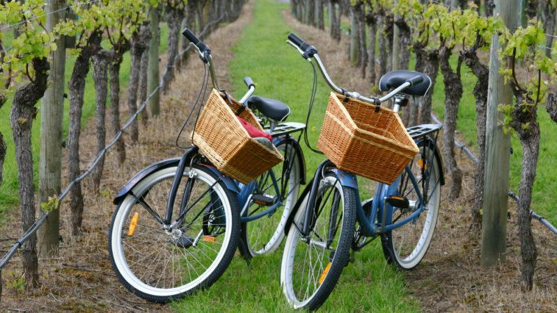 biking wine country