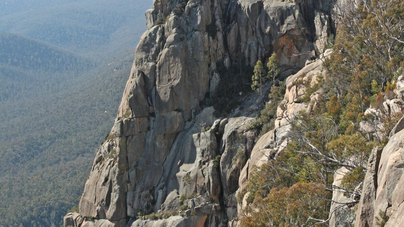 booroomba buttress