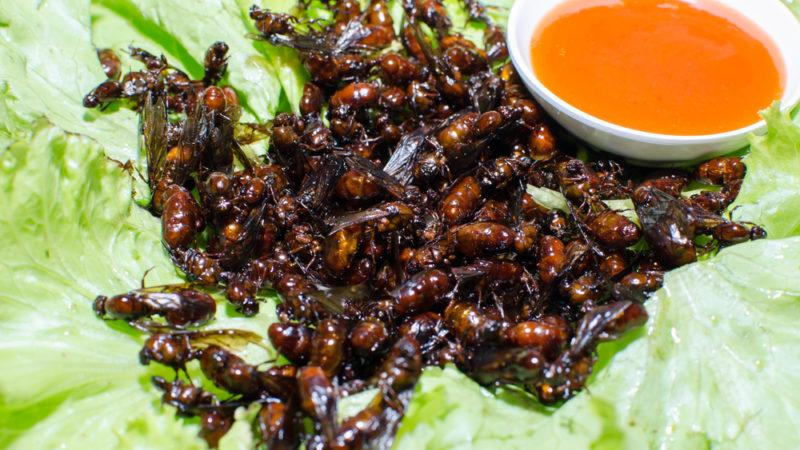 fried ants