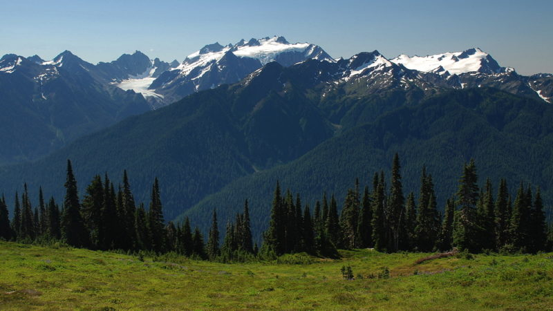 Enchanted Valley Washington