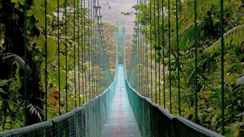 Cloudforest Monteverde, Costa Rica