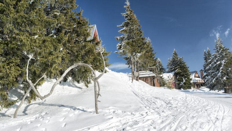Pamporovo Ski Resort