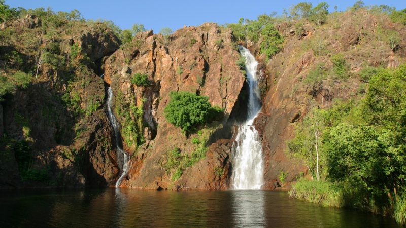 Wangi Falls Litchfield