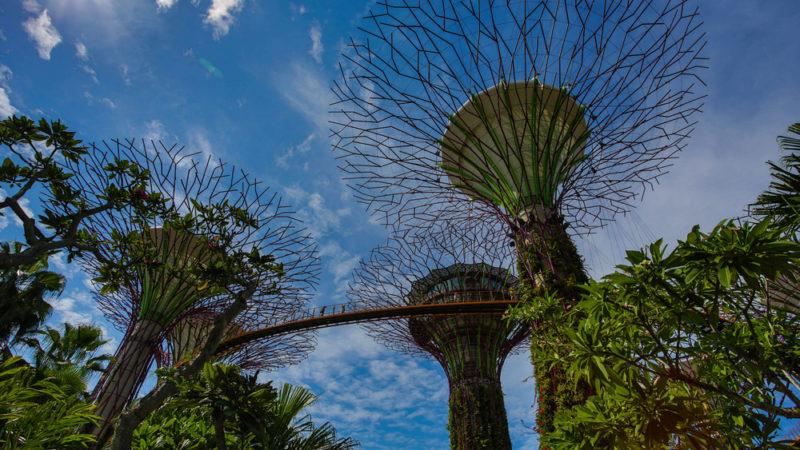 OCBC Skyway Singapore