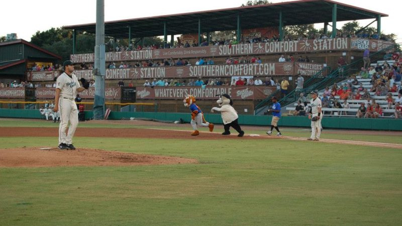 Photo by: Savannah Sand Gnats