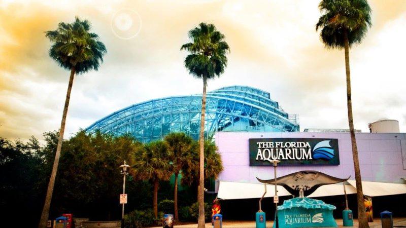 Photo by: The Florida Aquarium
