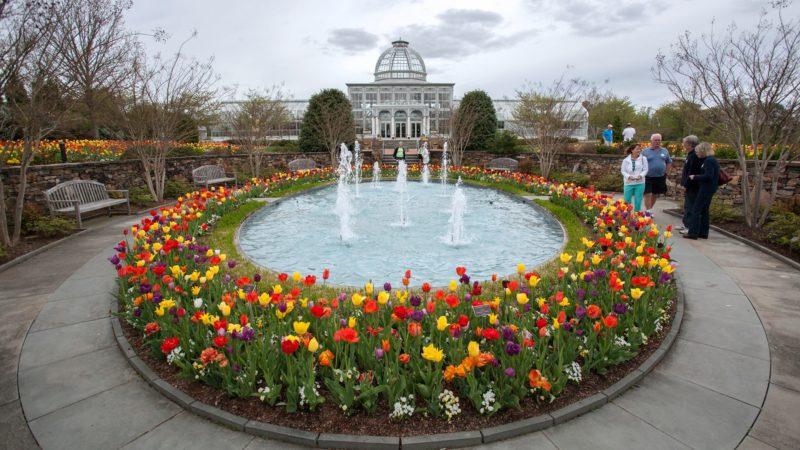 Photo by: Sarah Hauser/Lewis Ginter Botanical Gardens