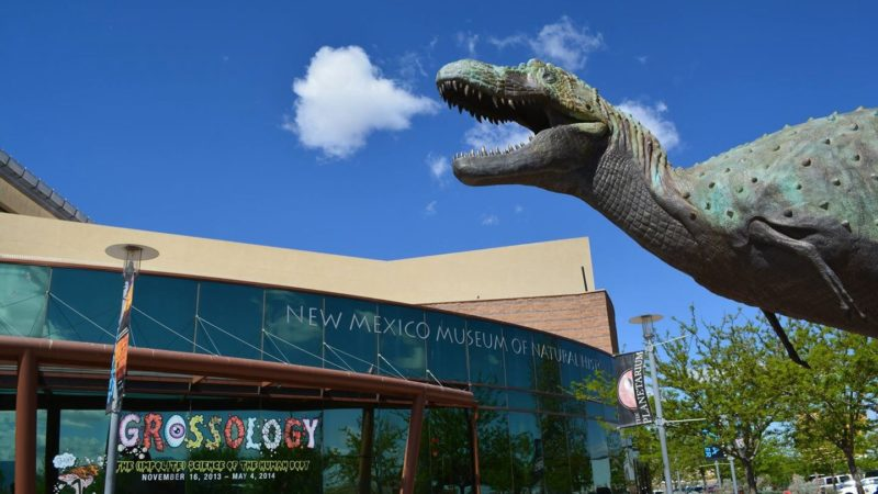 Photo by: New Mexico Museum of Natural History and Science