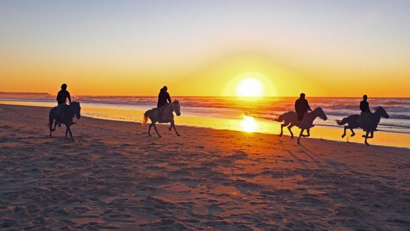 horseback riding beach