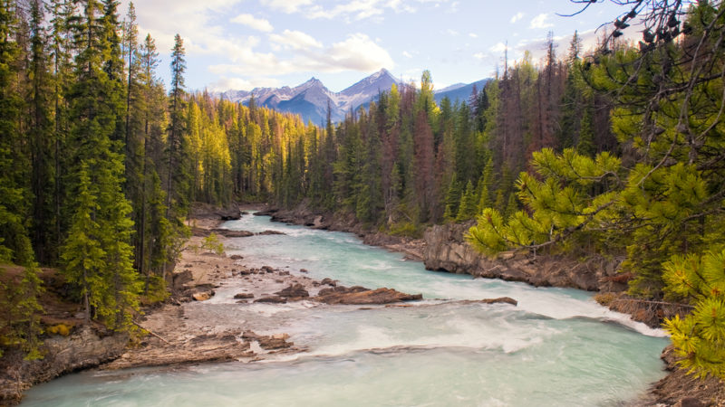 Kicking Horse River, British Columbia