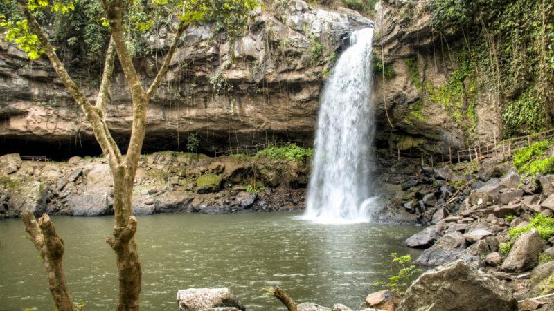 MiraFlora National Park