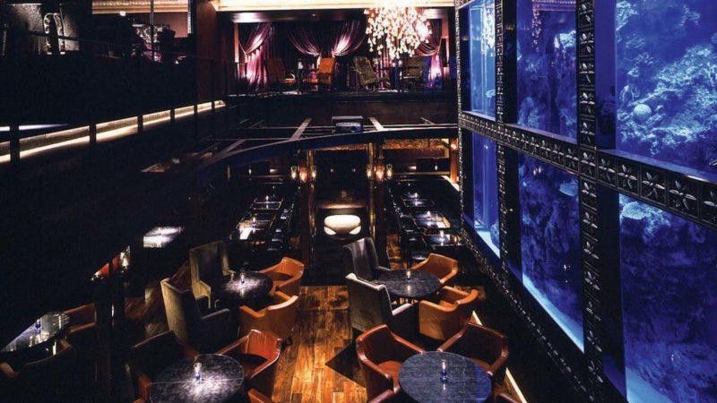 Photo by: Aquarium Architecture