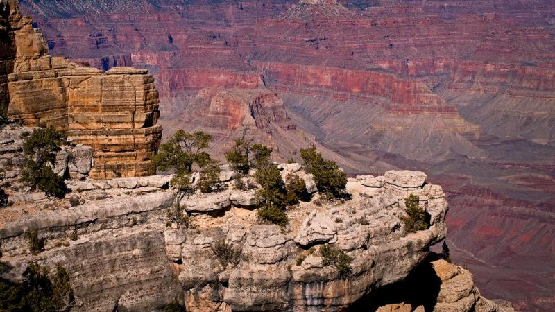 Grand Canyon South Rim, AZ