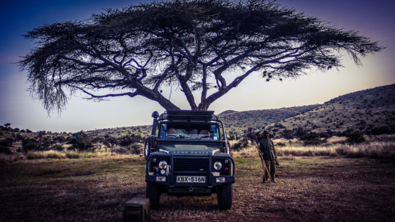 Photo by: Ultimate Conservation Safari