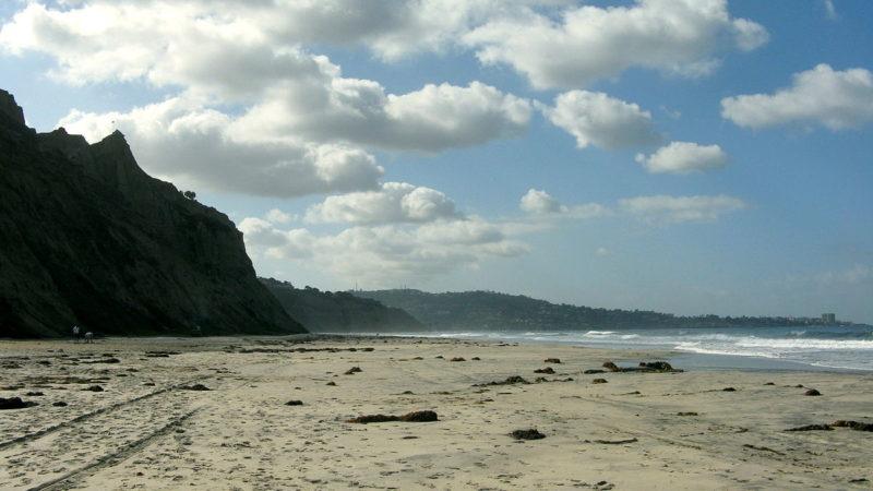 """Blacks-Beach-View-South-La-Jolla"" by Abeach4u - http://www.san-diego-beaches-and-adventures.com/blacks-beach-san-diego.html. Licensed under GFDL via Commons."