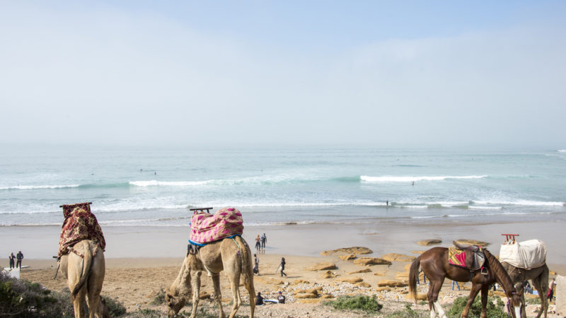 Surfing Morocco, Africa