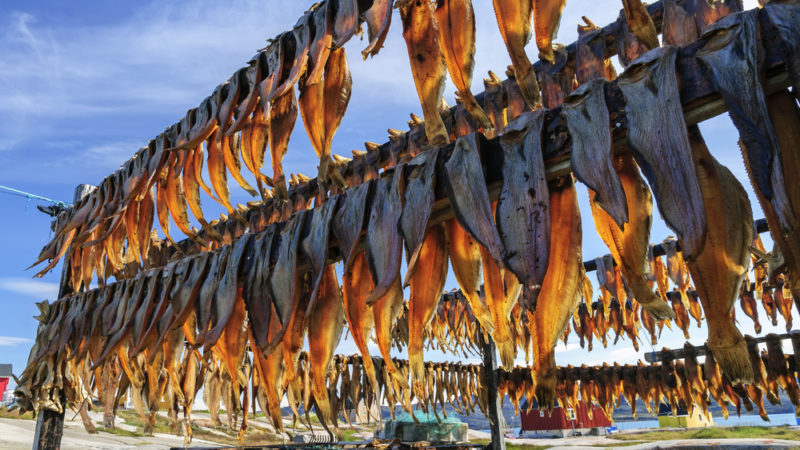 Dried Fish Greenland