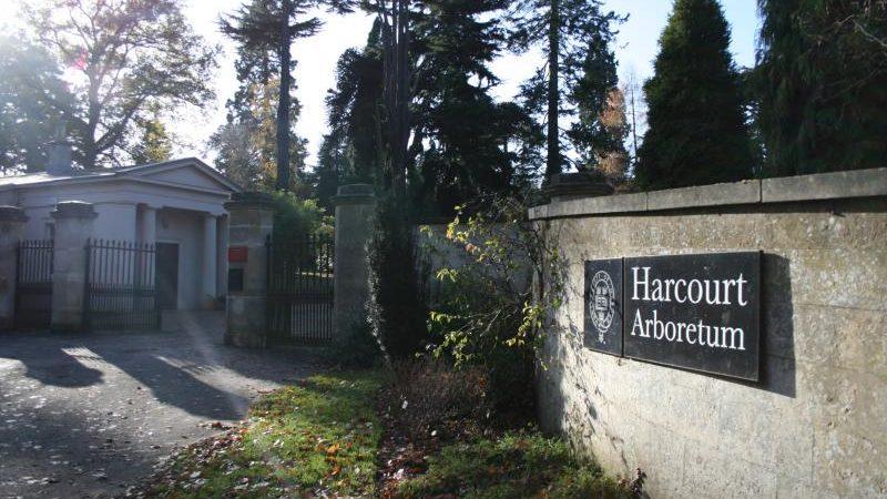 Harcourt Arboretum Oxford