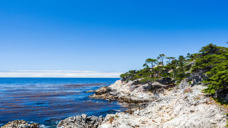 Cypress Point Lookout California