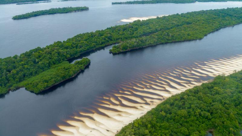 Anavilhanas Amazon