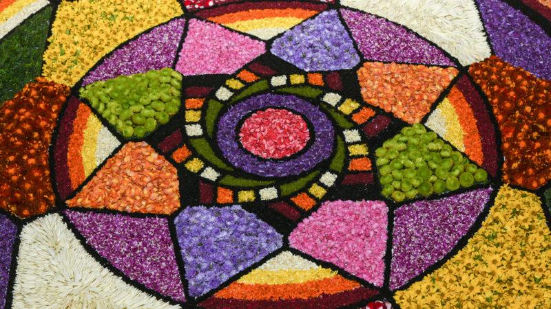 Onam flowers india