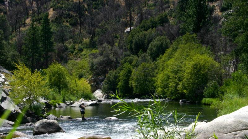 fishing kern river