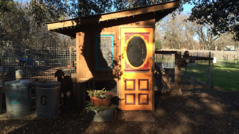 Photo by: Austin Funky Chicken Coop Tour