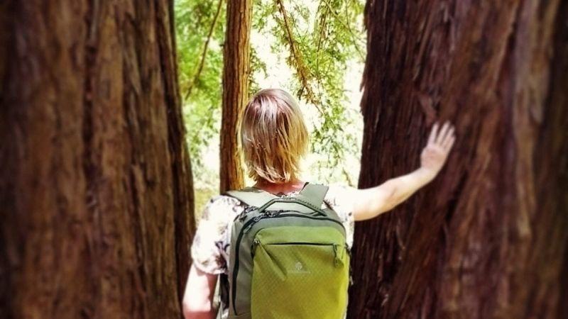 Eagle Creek Wayfinder backpack review