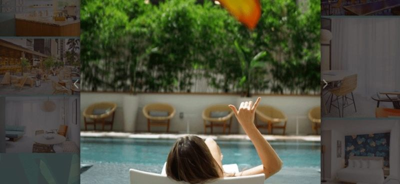 The Laylow Hotel Waikiki Hawaii