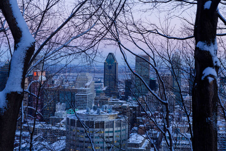Free Things To Do In Montreal In The Winter