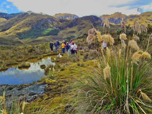 Ecuador: El Cajas National Park