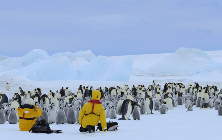 Tourists in emperor penguin colony