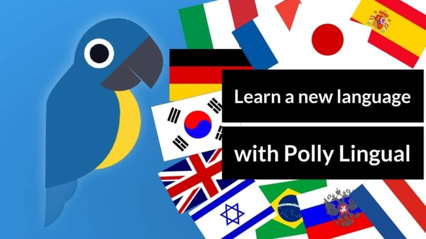 Learn A New Language With Polly Lingual