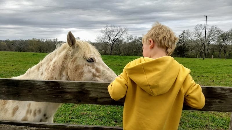 The Antidote for Kids' Tech Addiction: Weekend on the Farm