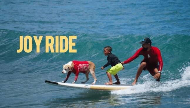 Hawaiian Surf Dog