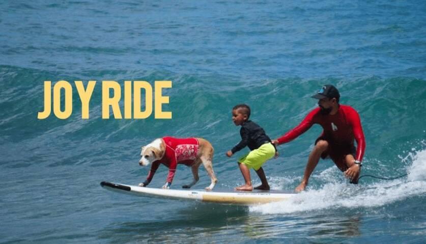 Hawaiian Surf Dog