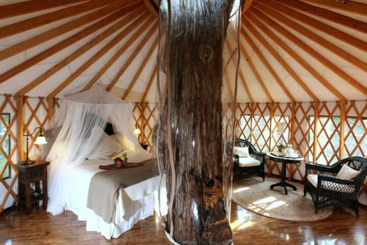 Treehouse Glamping in Texas Hill Country