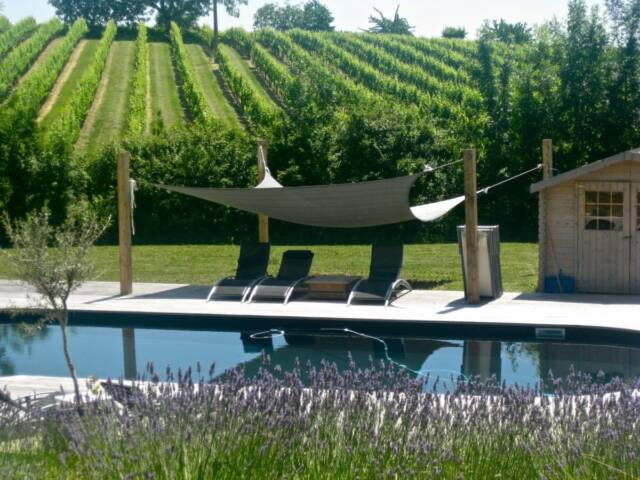 France: Finding Home in the Bordeaux Wine Valley