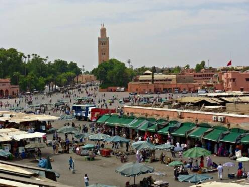 surviving marrakech