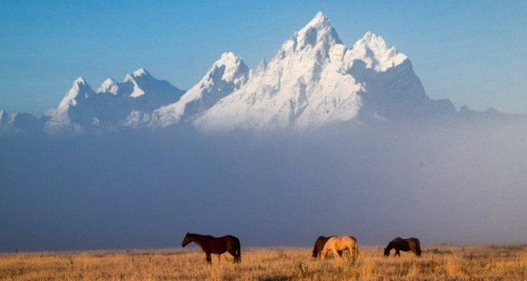 Mountain of Jackson Hole, Wyoming © Matt Payne