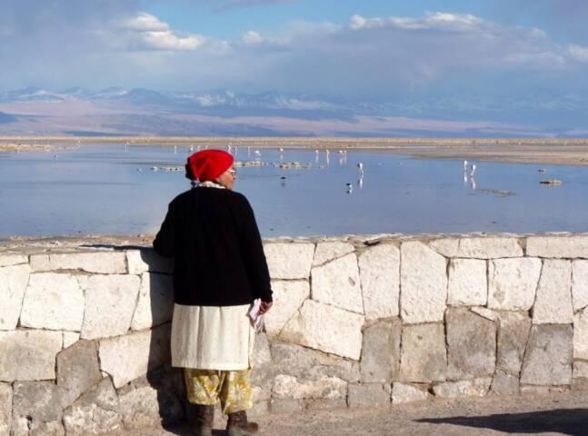 Atacama Salt Flats. Photo by Shelley Seale