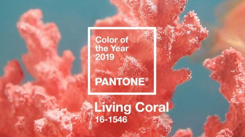 Pantone's Color of the Year: Living Coral