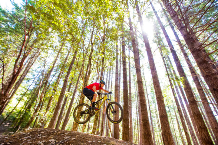 Top 12 Mountain Biking Trails in North America