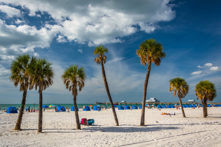 The Best Tampa Area Attractions