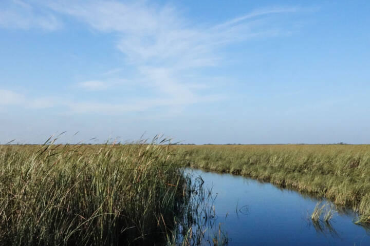 48 Hours in the Everglades