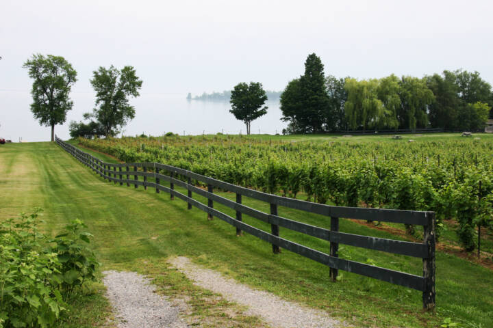 The Best Places to Drink, Eat and Relax in Prince Edward County